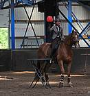 01-06-19 Working Equitatio in manege De Driesporen. Foto: B. Wolfs Onstwedde.info